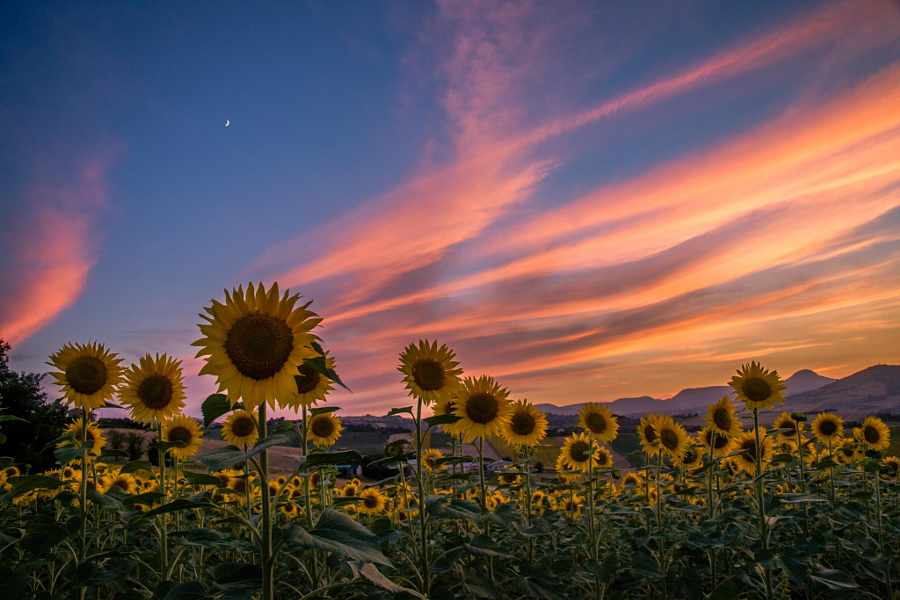 Sunset and Moonrise by Alex Roibu on 500px