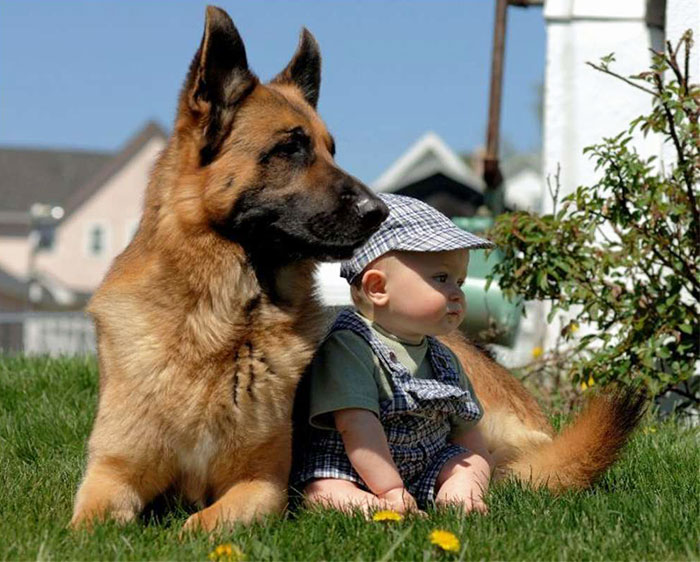 Adorable Photos kids with dog (11)