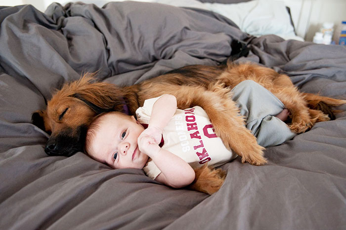 Adorable Photos kids with dog (27)