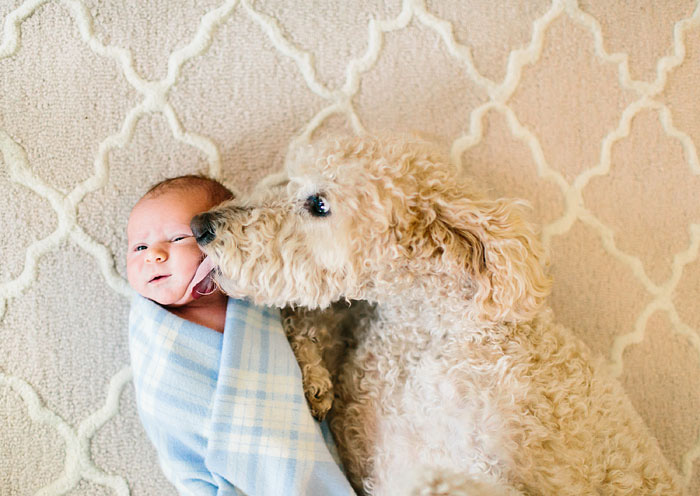 Adorable Photos kids with dog (6)