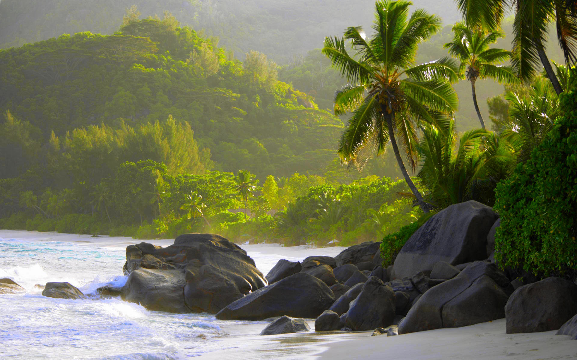 Rocks and palm trees along shore, Anse Intendance, Mahe´, Seychelles