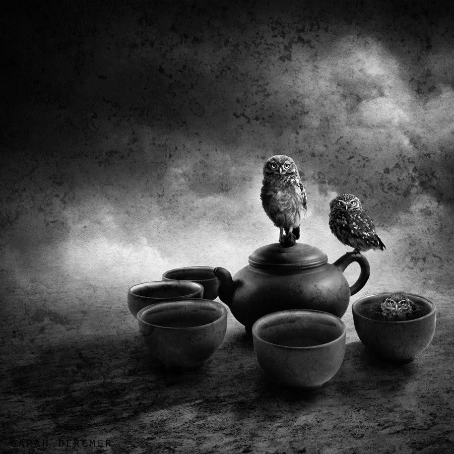 Surreal Black & White Photography by Sarah DeRemer (4)