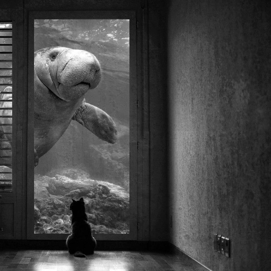 Surreal Black & White Photography by Sarah DeRemer (5)