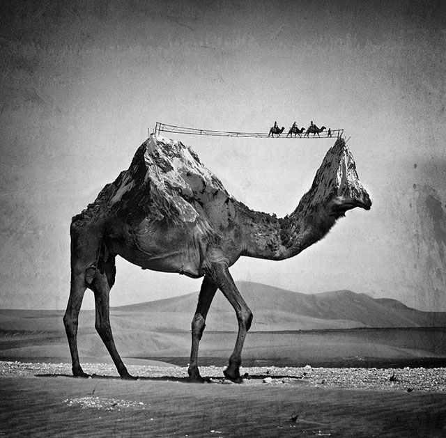 Surreal Black & White Photography by Sarah DeRemer (9)