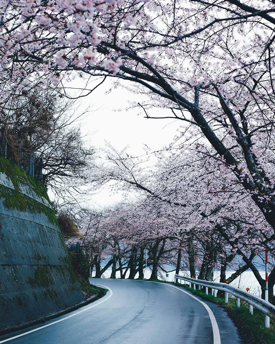 Beautiful Japanese Street Photography by Takashi Yasui (4)