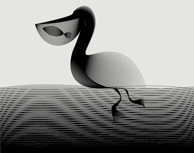 Amazing Animals illustrations using line art (5)