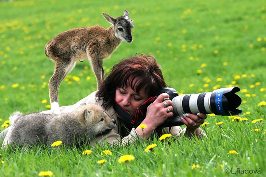 Awesome Animal & Nature Photography (5)