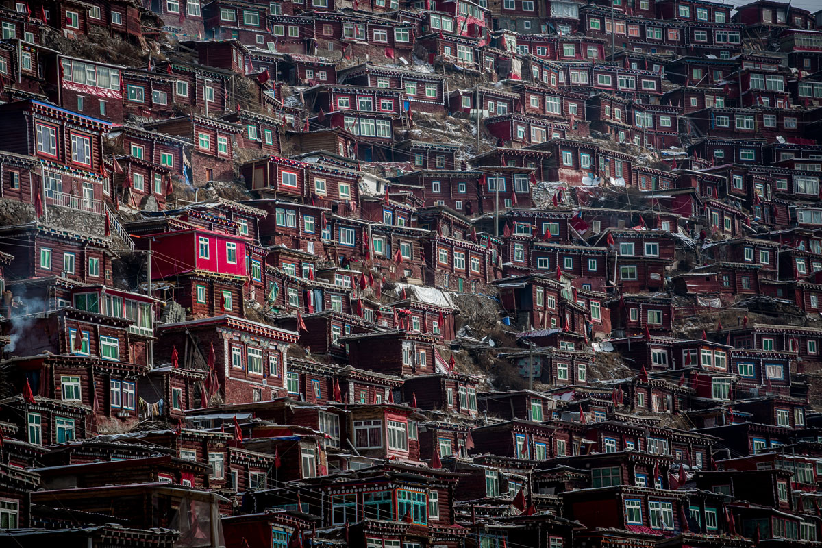 10. In the Midst of Monks By wan-shun-luk