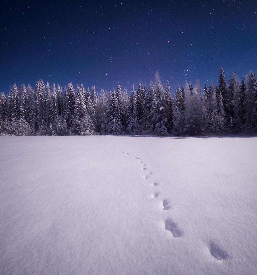 Night Sky Photography by Joni Niemela (7)