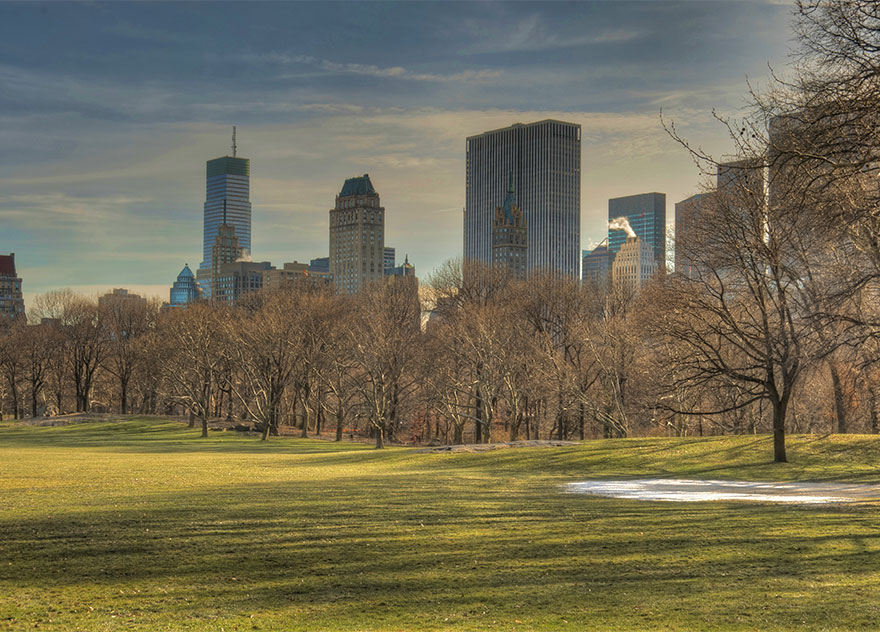 #19 Walking In Sheep Meadow, In New York's Central Park, United States