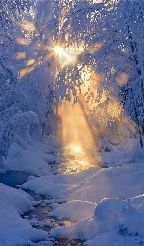 Stunning Sunrise Photos (15)