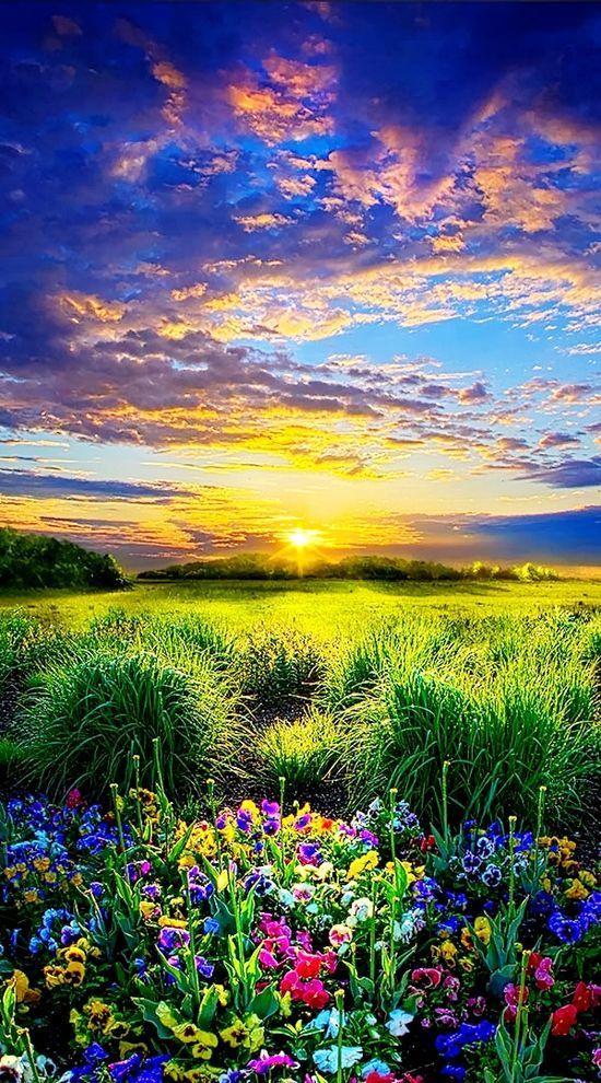 Stunning Sunrise Photos (16)
