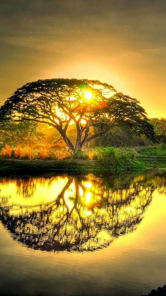 Stunning Sunrise Photos (17)