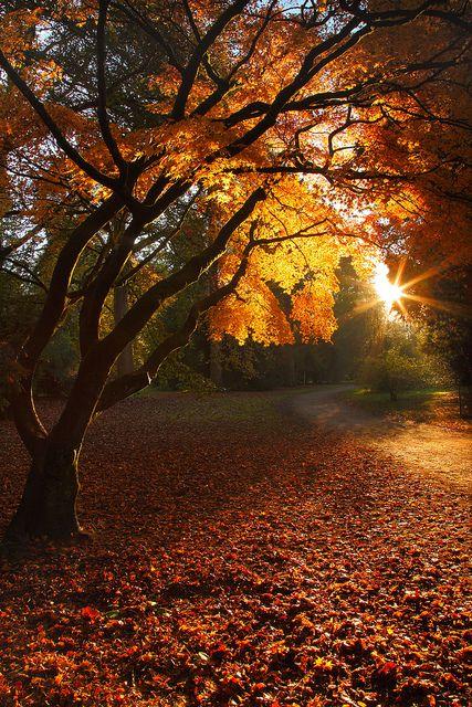 Stunning Sunrise Photos (25)