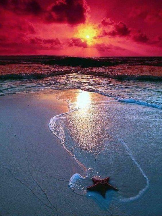 Stunning Sunrise Photos (8)