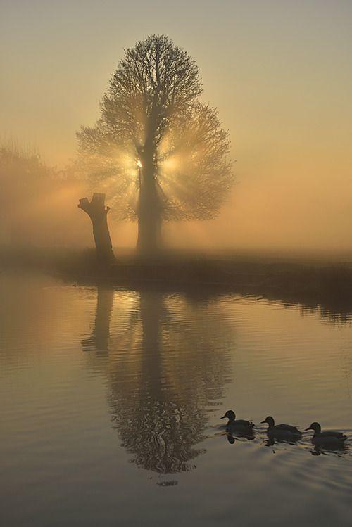 Stunning Sunrise Photos (9)