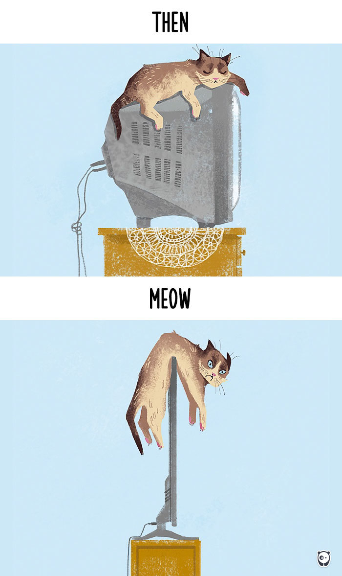 Then vs Meow How Technology Has Changed Cats Life (5)