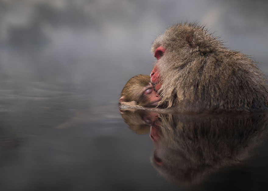 2016 National Geographic Traveler Contest's Best Photography (34)