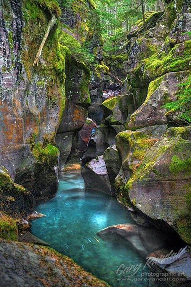 Avalanche Creek Gorge, Montana