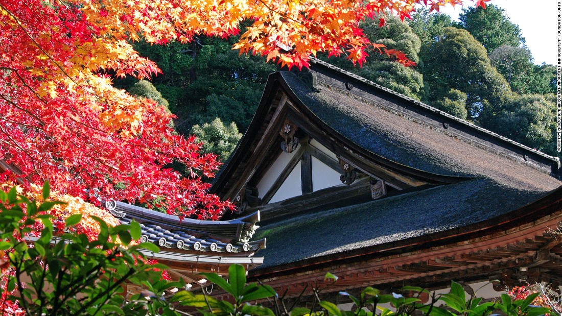 Most Beautiful Places In Japan (20)