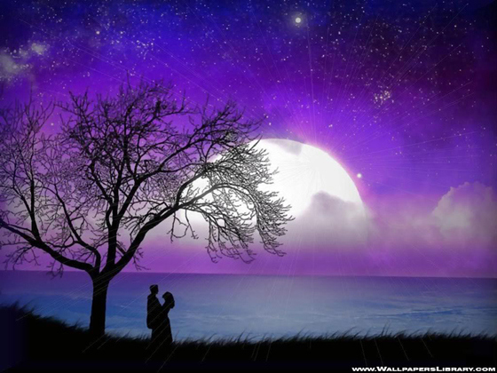 Beautiful Romantic Moonlight Wallpapers (11)