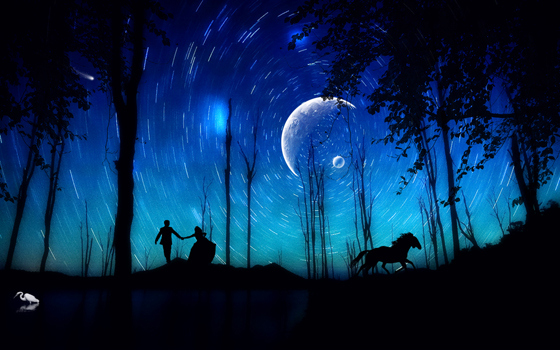 Beautiful Romantic Moonlight Wallpapers (16)