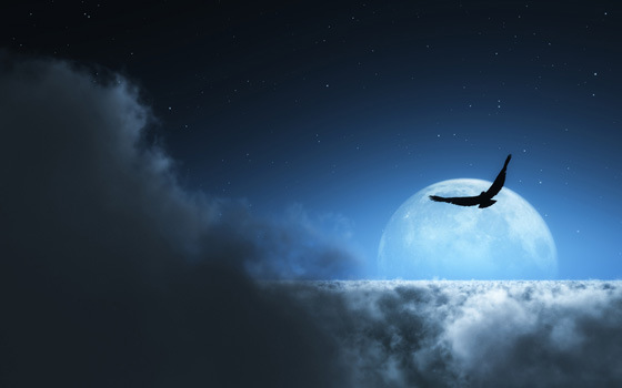 Beautiful Romantic Moonlight Wallpapers (22)