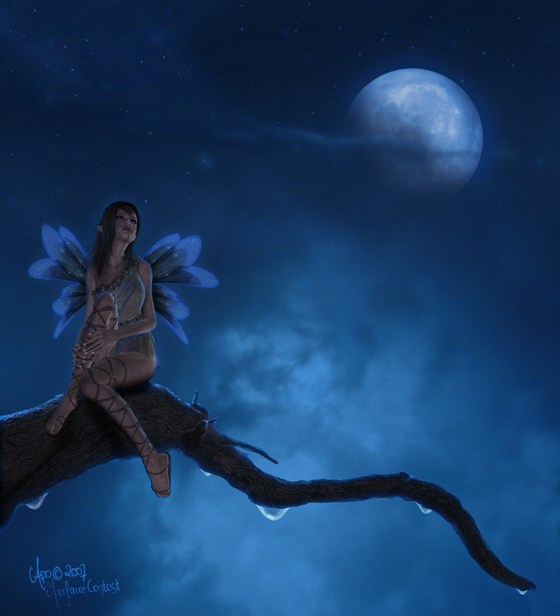 Beautiful Romantic Moonlight Wallpapers (23)