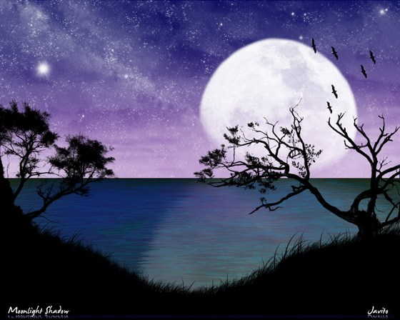 Beautiful Romantic Moonlight Wallpapers (24)
