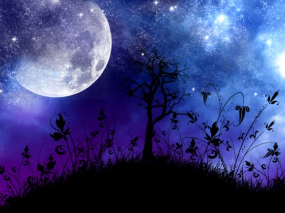Beautiful Romantic Moonlight Wallpapers (29)