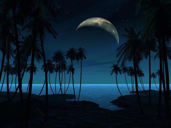 Beautiful Romantic Moonlight Wallpapers (30)