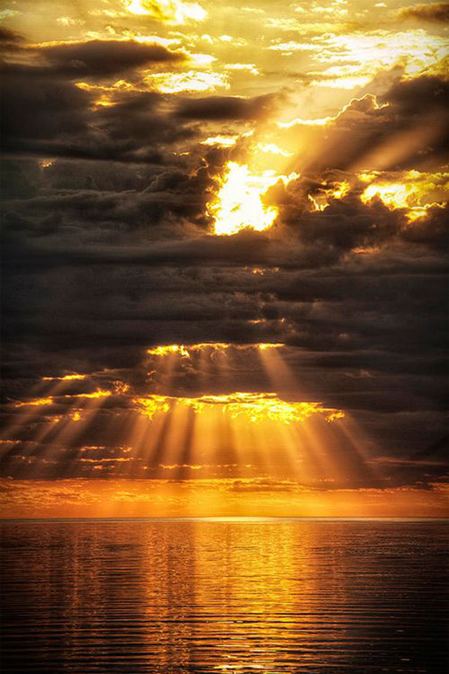 Gorgeous Sunshine Pictures (16)
