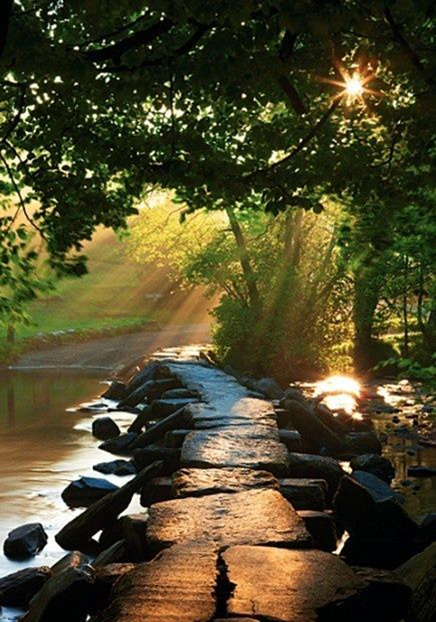 Gorgeous Sunshine Pictures (30)