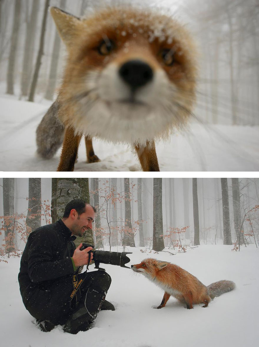 Pictures That Reveal The Truth Behind Photography (1)