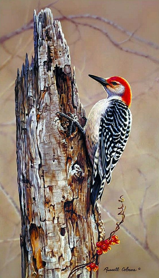 Realistic Oil Painting of Birds (19)