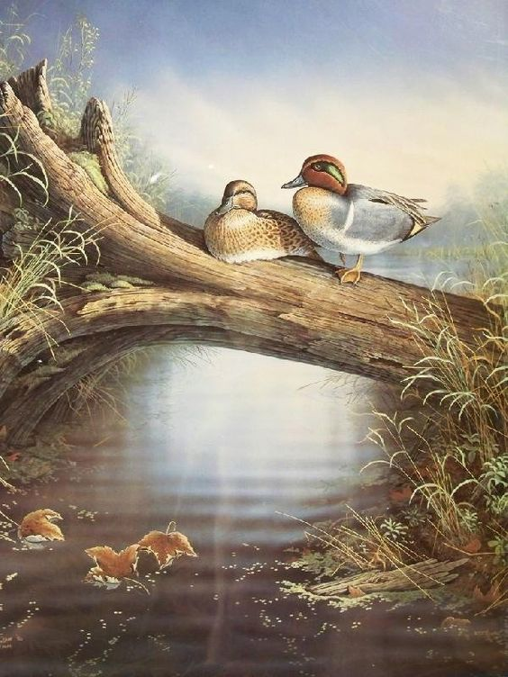 Realistic Oil Painting of Birds (9)