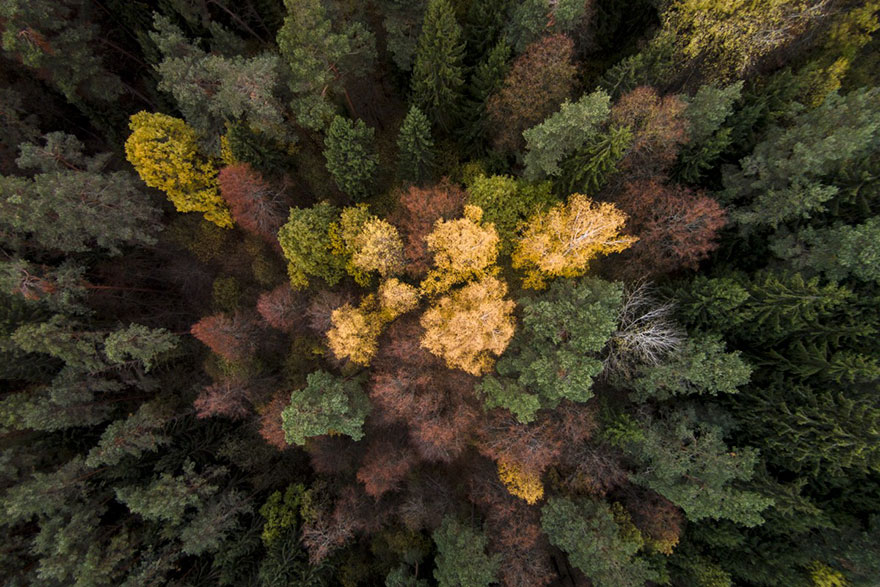 The Best Drone Photos Of 2016 (19)