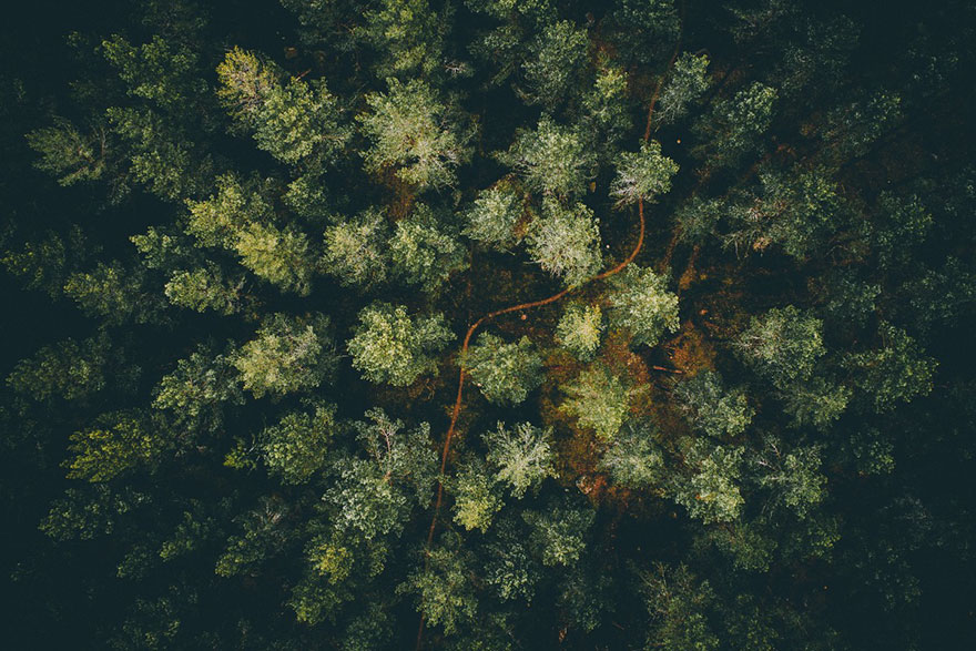 The Best Drone Photos Of 2016 (20)