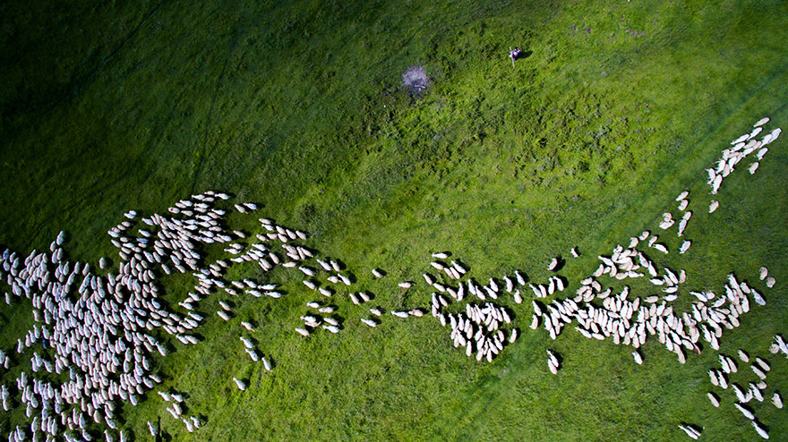 The Best Drone Photos Of 2016 (3)