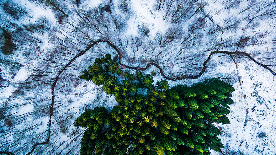 The Best Drone Photos Of 2016 (8)