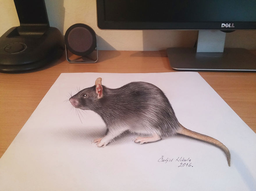 3D Drawing Created By Nikola Culjic (8)