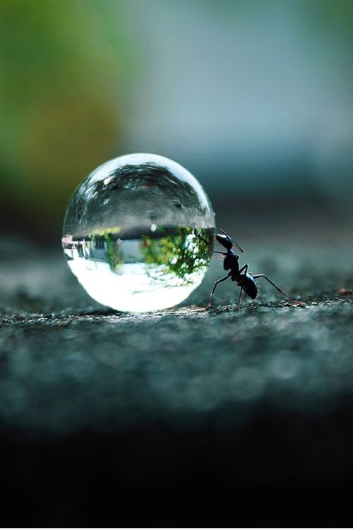 Creative and Amazing Perspective Photography (11)