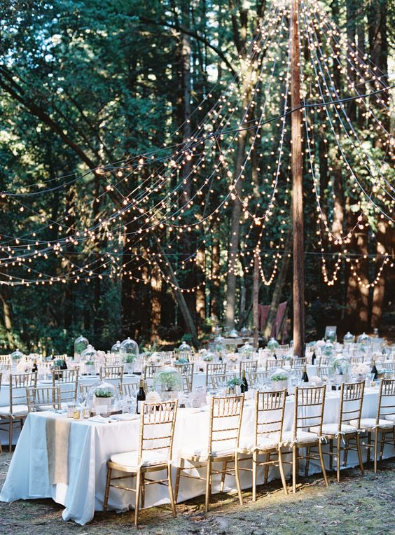 Amazing outdoor wedding decorations ideas great inspire amazing outdoor wedding decorations ideas 9 junglespirit Choice Image