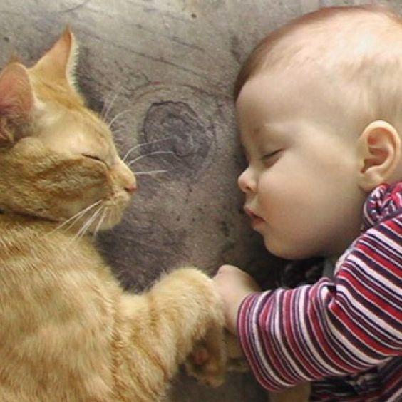 cute-baby-sleeping-images-11