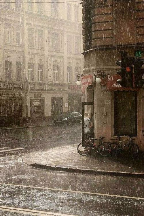 rainy-day-photography-by-eduard-gordeev-6