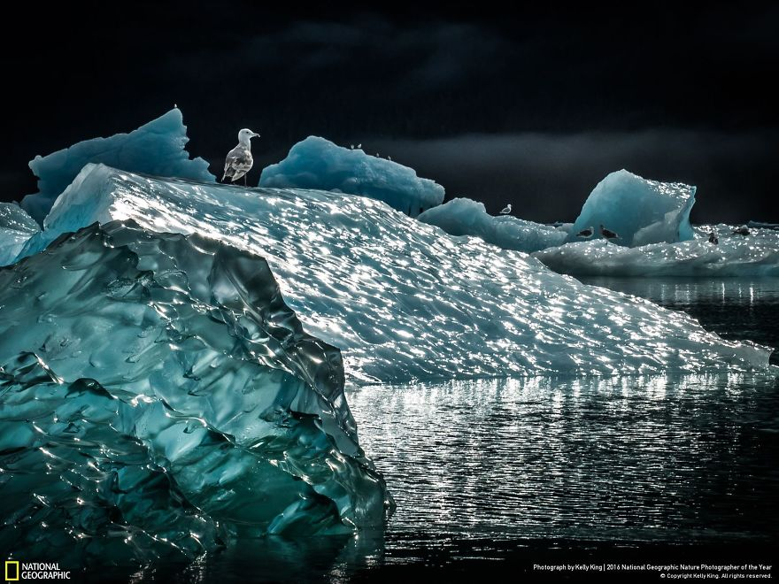 2016-national-geographic-photography-16