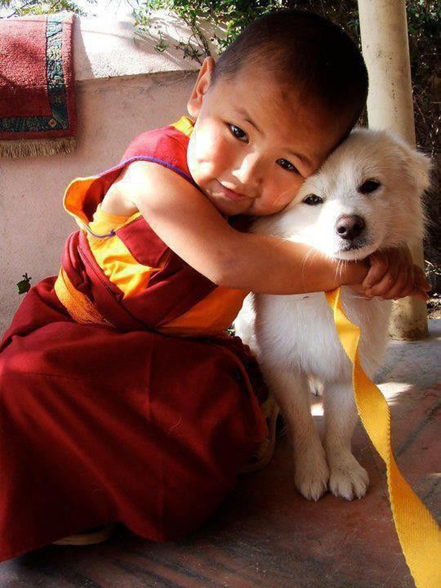 relationship-between-cute-baby-and-pet-25