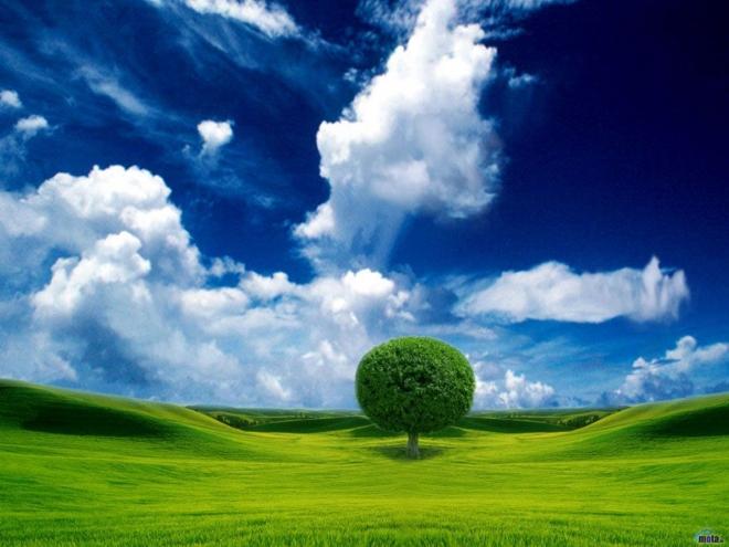 Beautiful Nature Wallpapers For Desktop (13)