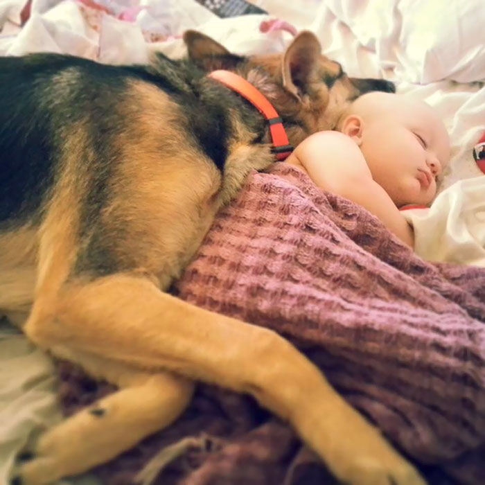 Cutest Babies Images With Puppy Dogs (1)
