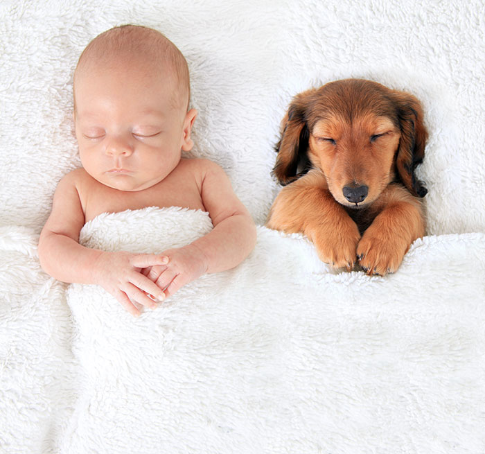 Cutest Babies Images With Puppy Dogs (10)
